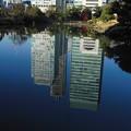写真: 水の都