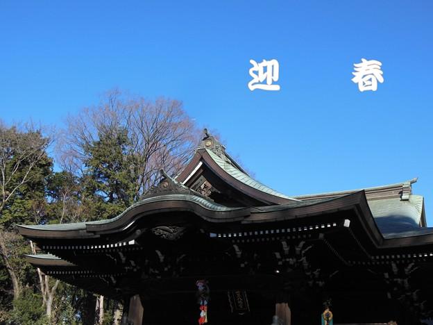 写真: 迎春~初詣に行ってきました