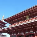 写真: 浅草寺と五重塔
