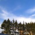 十八本 <六本木>