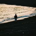 写真: 波打ち際を走る