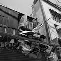 写真: 軒先のオブジェ