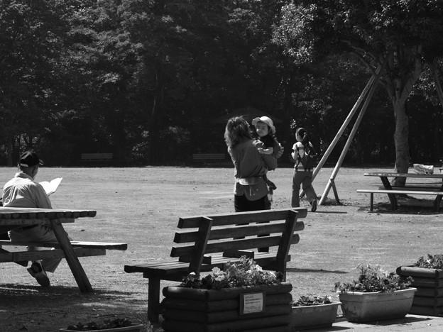 写真: 休日の朝の公園は