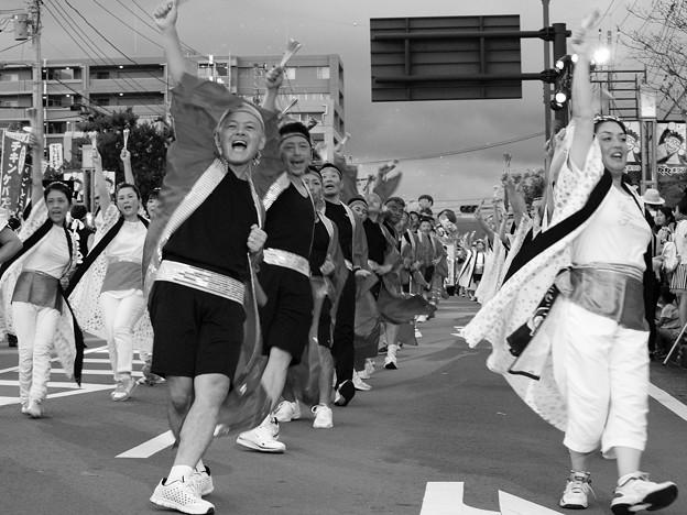 長泉わくわく祭り 2017-b