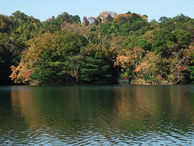 一碧湖の秋 *d