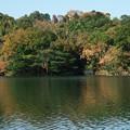 写真: 一碧湖の秋 *d