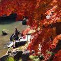 写真: 見入る秋、垂れる秋色 *a