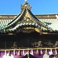 写真: 初詣は三嶋大社で