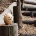 写真: Kicoroの森の住人 *b