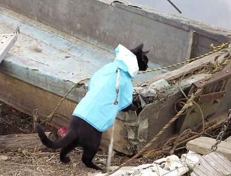 ボートの大冒険チャンプ7