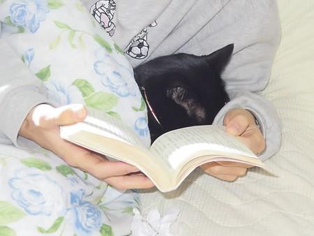 黒猫チャンプの読書3