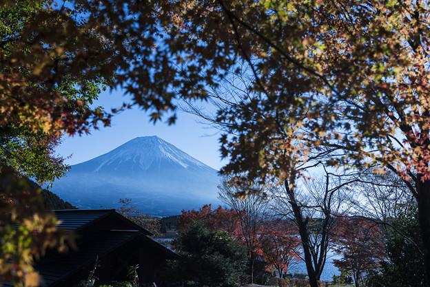 錦秋の富士