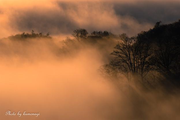 写真: 棚田と雲海と夜明け。#2