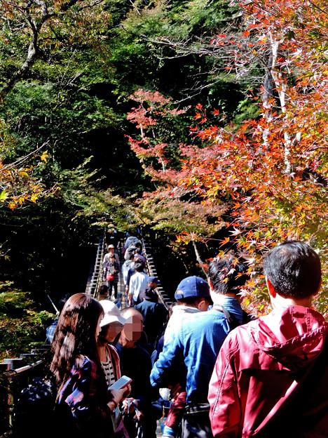 Photos: 花貫渓谷にて