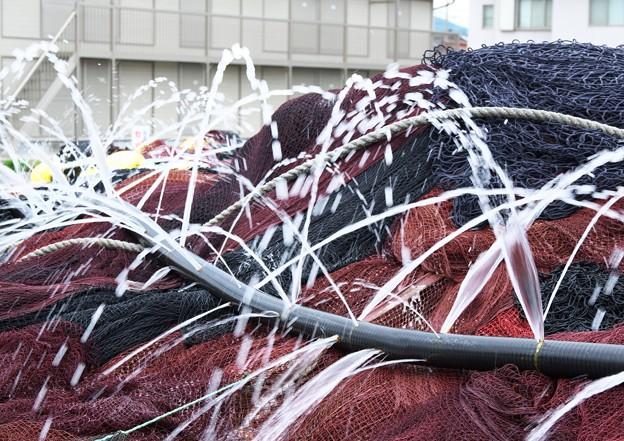 巾着網のシャワー(2)H29,7,11