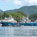 写真: 港の風景(8)H29,9,21