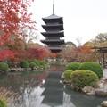 東寺と五重塔  (2) H29,11,20