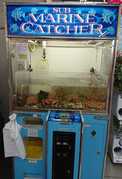 蟹キャッチャー