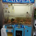 Photos: 蟹キャッチャー