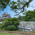 Photos: 深手の城・清正の城