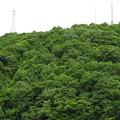 写真: 北海道の風景