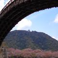 錦帯橋の下から岩国城