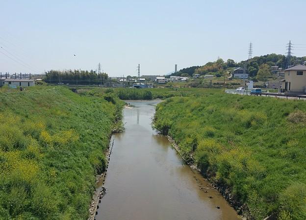 0502竜田川1