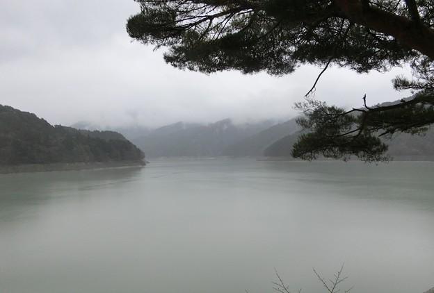 ダム-井川ダム2