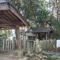 写真: 0107大和三山香久山2山頂