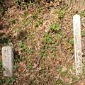 写真: 龍門の滝1