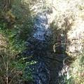 写真: 龍門の滝2