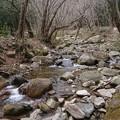 写真: 0114東お多福山4住吉川
