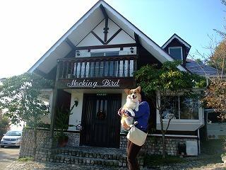 2009_1123岡山にて0142