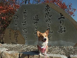 2009_1123岡山にて0165