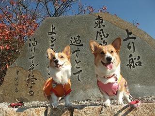 2009_1123岡山にて0183