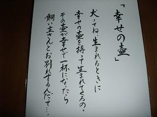 2010_02200002