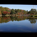 Photos: 額縁の紅葉風景2!20141115
