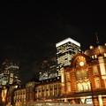 写真: 東京駅のイルミネーション2014