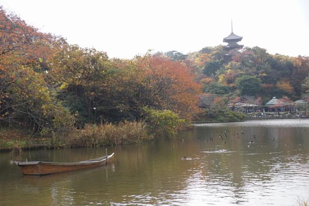 三渓園の紅葉風景2014