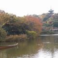 写真: 三渓園の紅葉風景2014