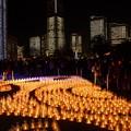 写真: 横浜ライトアップ2014