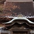 写真: 円覚寺舎利殿の残雪!2015