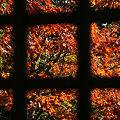 写真: 格子窓の向う091121-909
