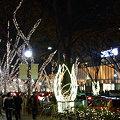 Photos: 表参道を飾るイルミネーション!(091202)