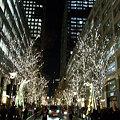 Photos: ビル街に並木のライトアップ!(091222)