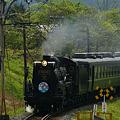 Photos: SL蒸気機関車走る!(100504)