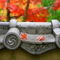 写真: 瓦塀の秋