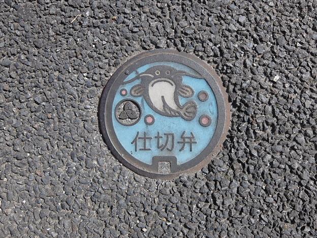 埼玉県・吉川市