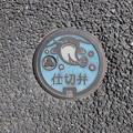Photos: 埼玉県・吉川市