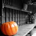 写真: 04.10.04-妻籠宿の思い出【蔵出し】